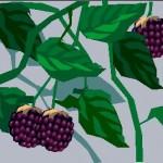 Poem Blackberries
